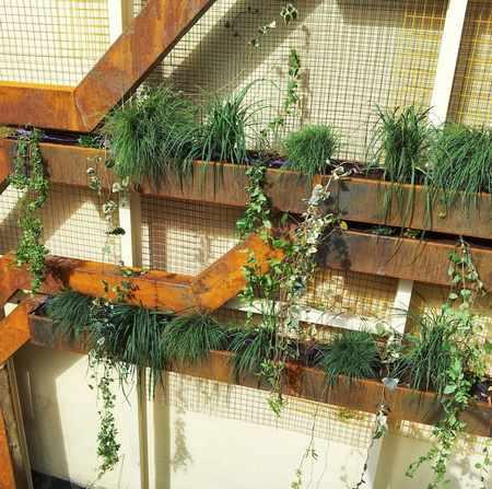 giardino verticale albero 3