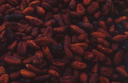 ioequo cacao