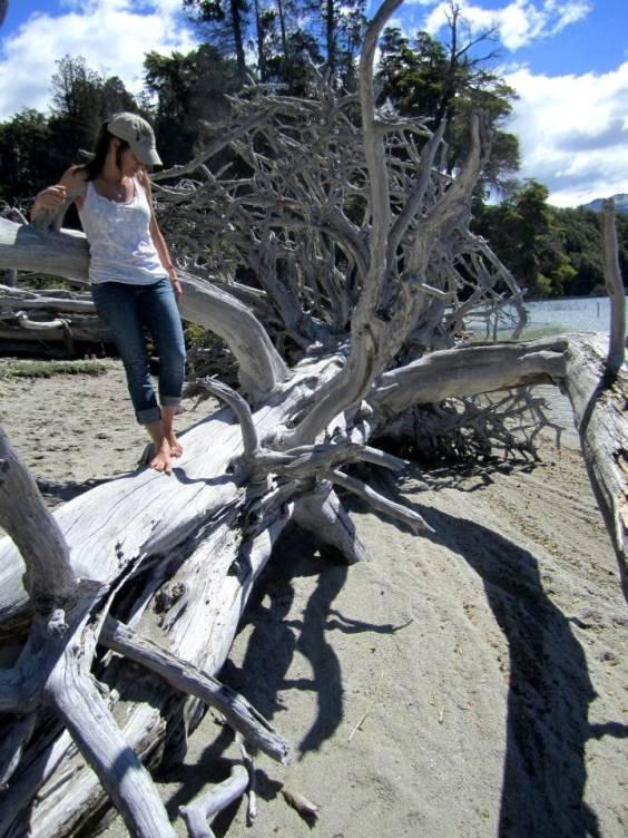 laguna patagua