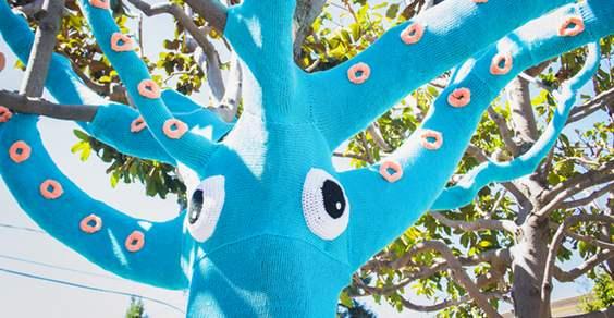 squid tree 1