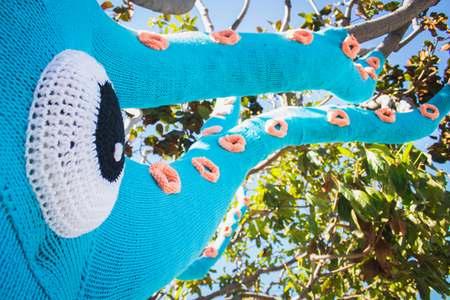 squid tree 4