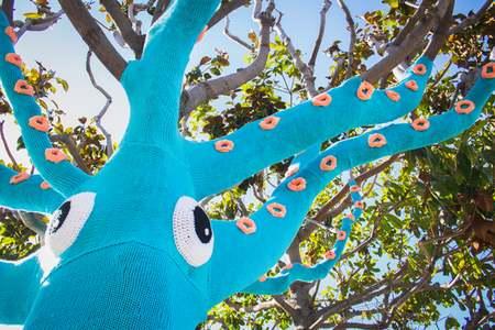 squid tree 5