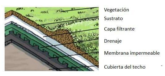 strati tetto verde