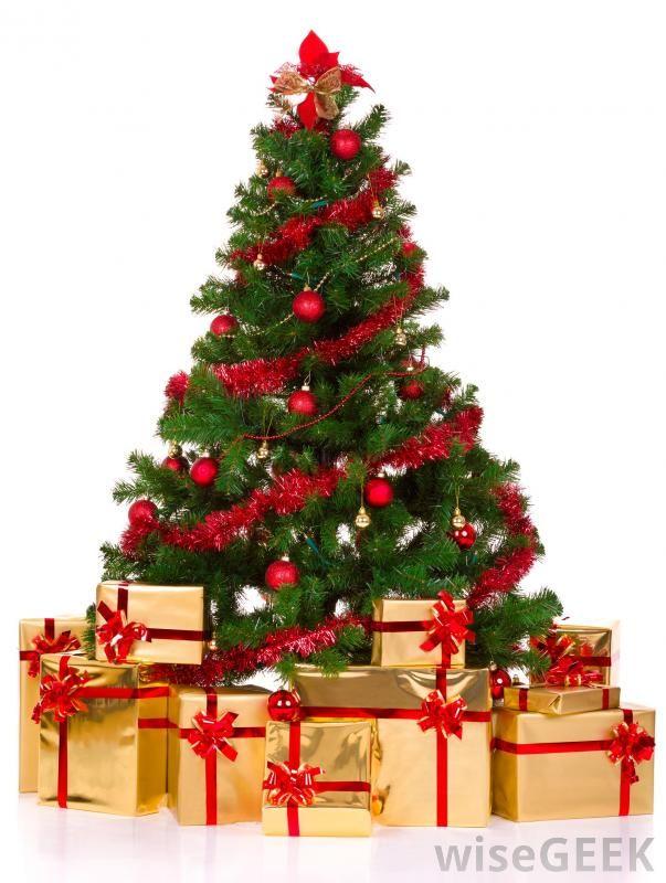 Foto Di Alberi Di Natale.Albero Di Natale Vero Finto O Riciclato Quale Scegliere