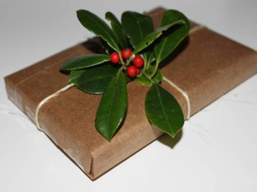 b2ap3_thumbnail_eco-gift-wrap-2.jpg