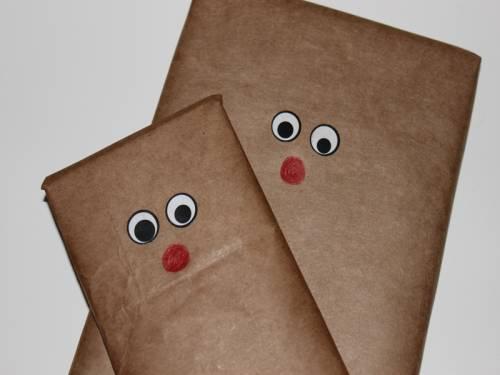 b2ap3_thumbnail_eco-gift-wrap-7_20131221-142428_1.jpg