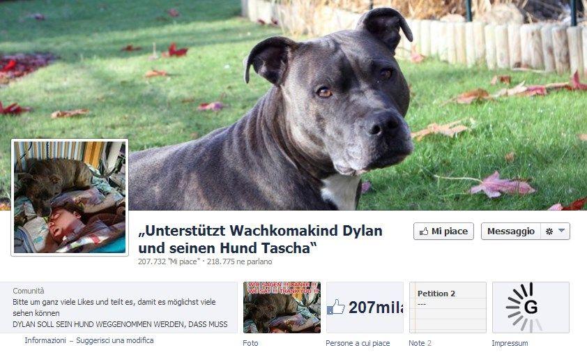 petizione cane