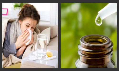 raffreddore oli essenziali