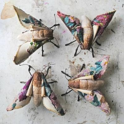 b2ap3_thumbnail_Blossom-moth-sisters-small.jpg