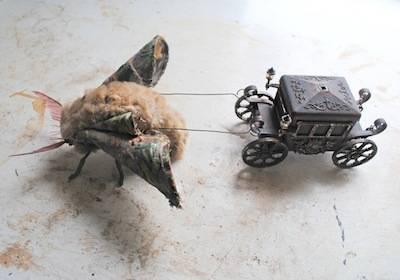 b2ap3_thumbnail_Moth-and-coach-small.jpg