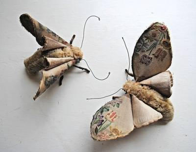 b2ap3_thumbnail_open-winged-moth-and-sister-large-1024x794.jpg