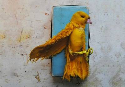 b2ap3_thumbnail_vintage-recycled-textile-embroidery-art-mister-finch-1.jpg
