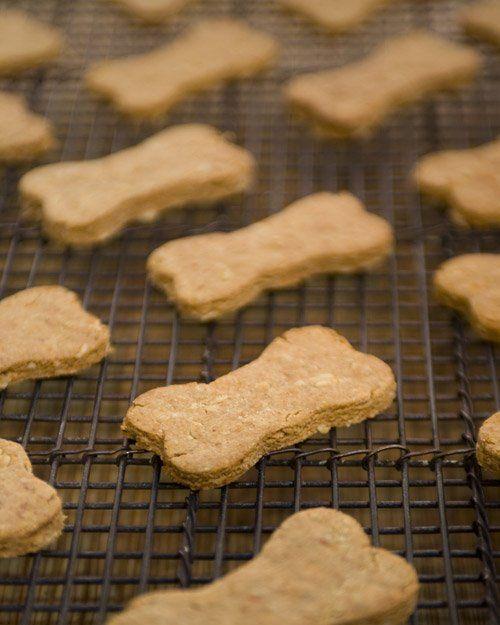biscotti per cani 3