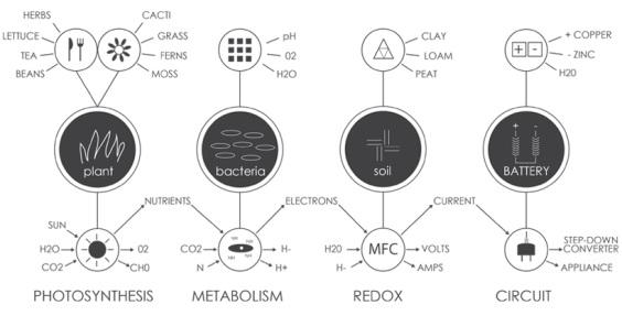 biopannello come funziona