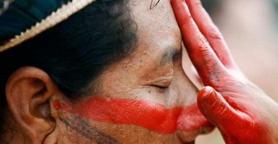indigeni cover
