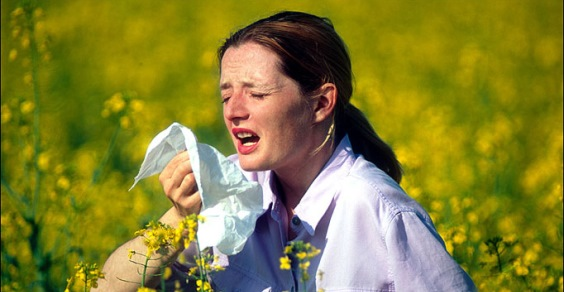 allergia filtro