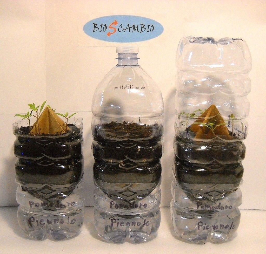 Fai Da Te Bottiglie Plastica.Come Costruire Semenzai Fai Da Te Autoirriganti Dalle