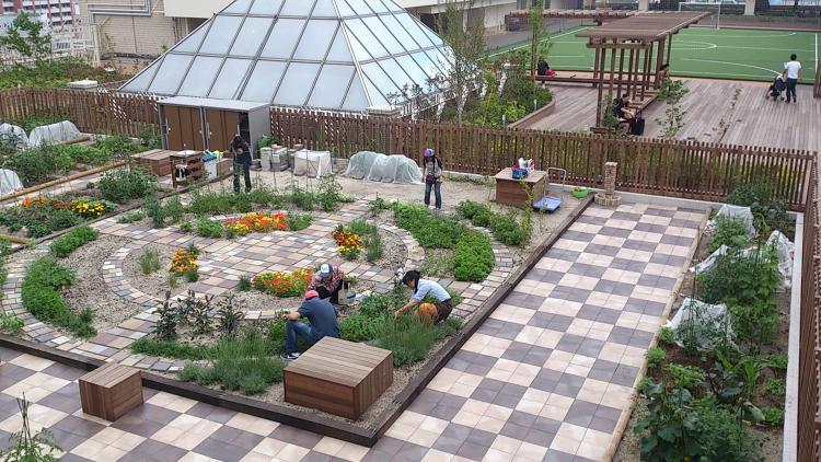 tokyo community garden 3