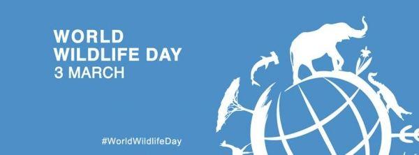 world-wildlife-day-jpg