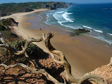 spiagge portogallo 6 praia do amado