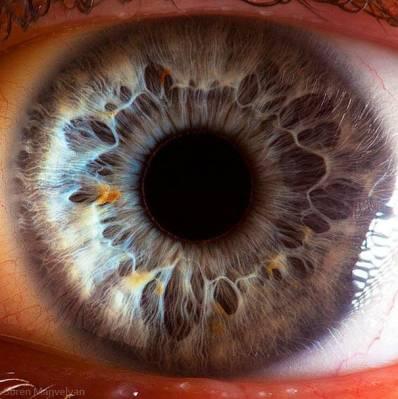 b2ap3_thumbnail_eye-macro-photo-4.jpg