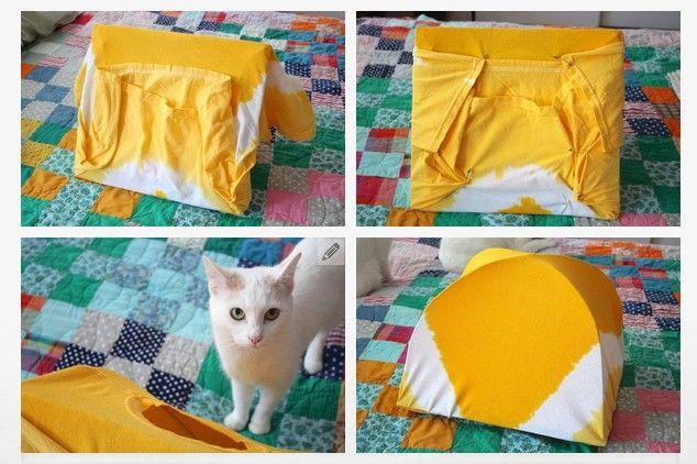 cat tent 8