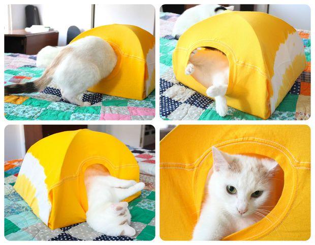 cat tent 9