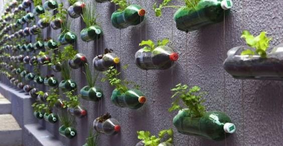 giardini verticali cover