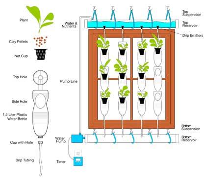 windows farm