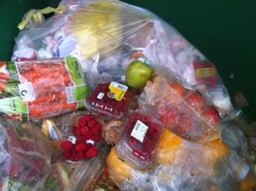 1403110455 food waste