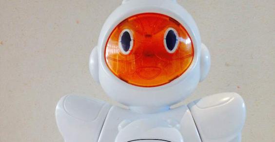 Birò-robot
