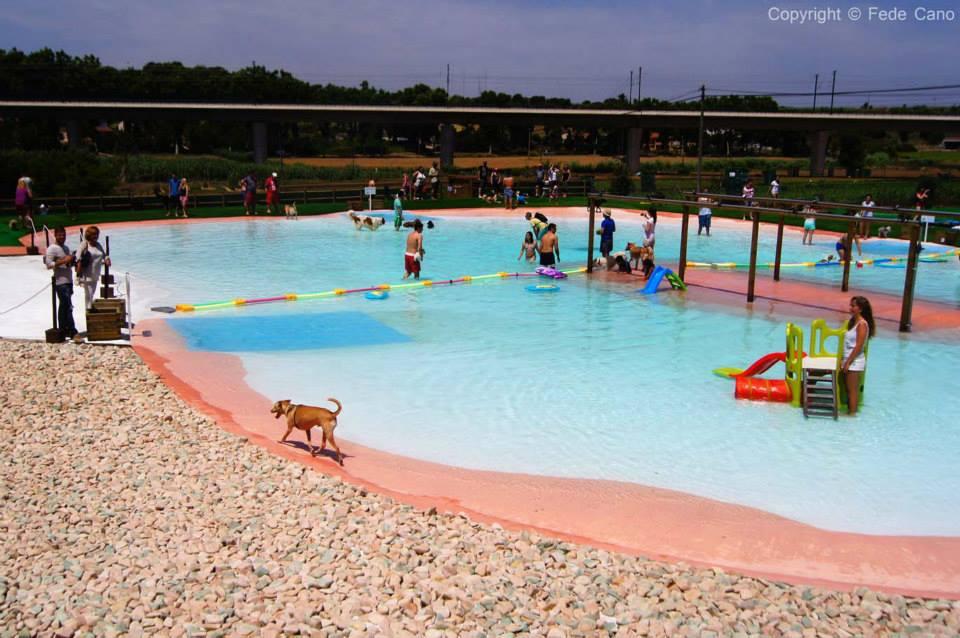 resort cani5