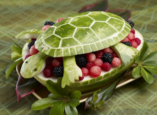 anguria tartaruga