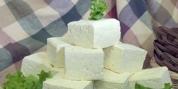 celle solari tofu