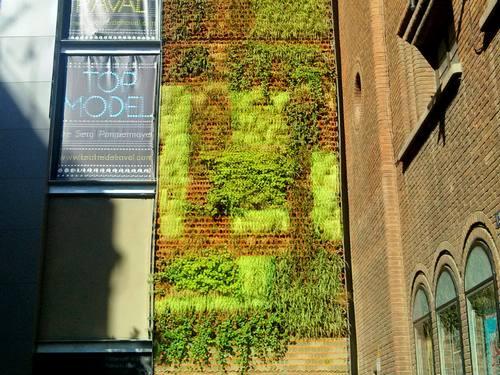 giardino verticale barcellona 2