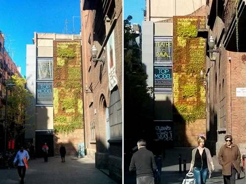 giardino verticale barcellona 4