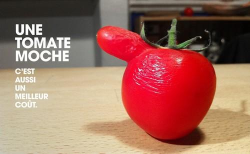 legumes moche 2