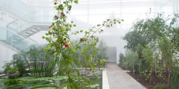 giardino biodiversita padova