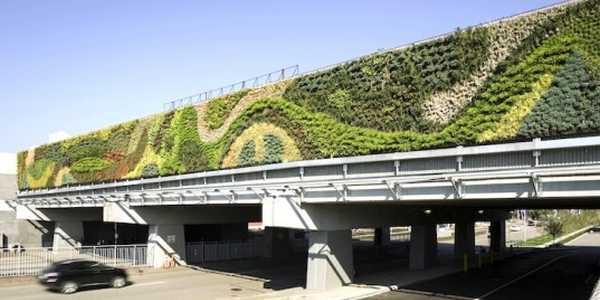 parete verde 1