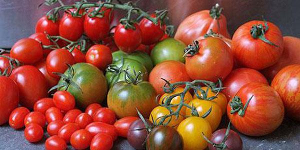 pomodori come scegliere