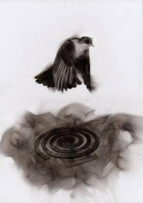 b2ap3_thumbnail_Steve-Spazuk-Ornithocide-dipinti-fuoco-pesticidi-uccelli-insetti-00.jpg