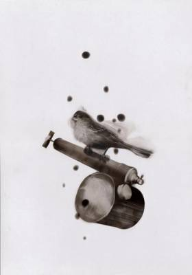 b2ap3_thumbnail_Steve-Spazuk-Ornithocide-dipinti-fuoco-pesticidi-uccelli-insetti-01.jpg