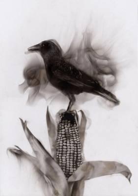 b2ap3_thumbnail_Steve-Spazuk-Ornithocide-dipinti-fuoco-pesticidi-uccelli-insetti-03.jpg