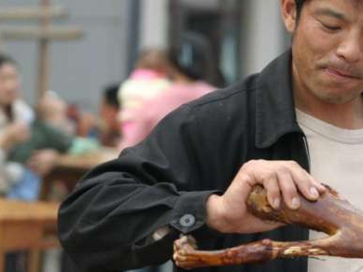 Maltrattamento animali: 10 orribili pratiche che la Cina