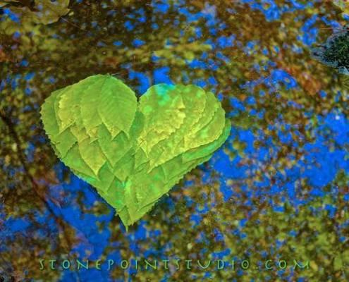 b2ap3_thumbnail_David-Allen-arte-natura-pietre-foglie-Stone-Point-Studio-12.jpg