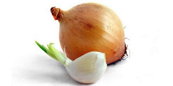 cancro aglio cipolla