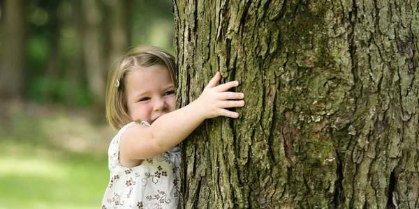silvoterapia abbracciare alberi