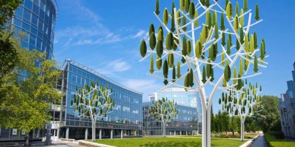 albero vento2