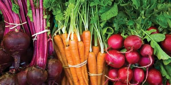biologico agricoltura bio report