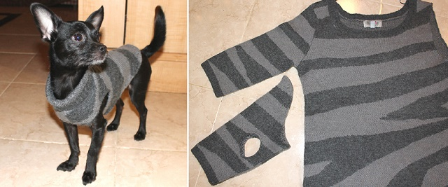 dog-sweater-1